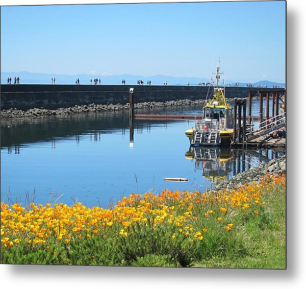 Reflections Of Ogden Point Metal Print
