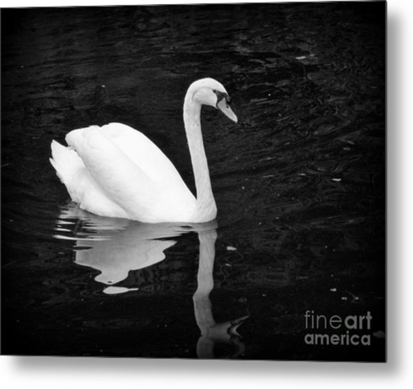 Reflective Beauty Metal Print