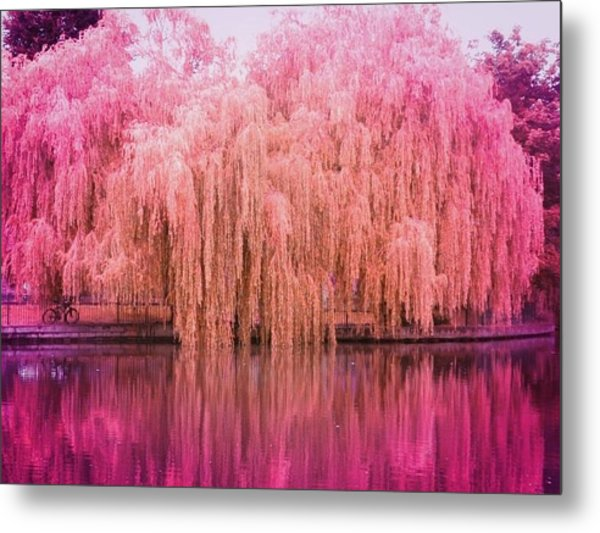 Regeant's Canal Metal Print by Andreia Gomes