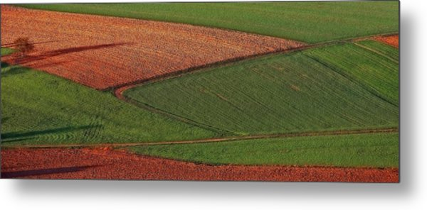 Resting Fields 1 Metal Print