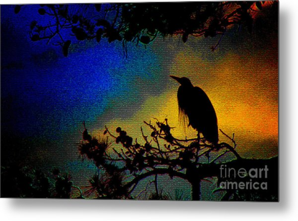 Richly Colored Night  Metal Print