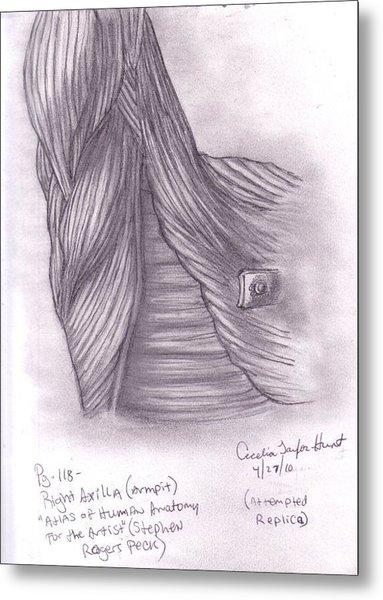 Right Axilla Metal Print by Cecelia Taylor-Hunt