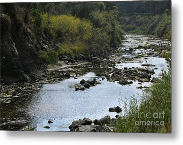 River At The Golf Course Laguna Metal Print by Nelly Marziale