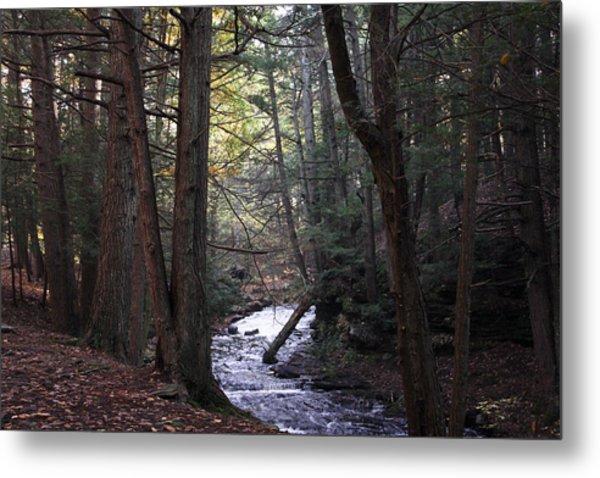 River Below Grayville Falls 1 Metal Print