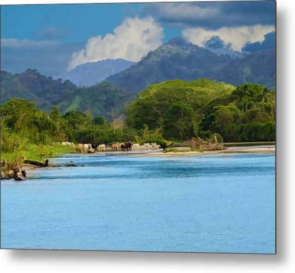River Crossing Metal Print by Delores Knowles