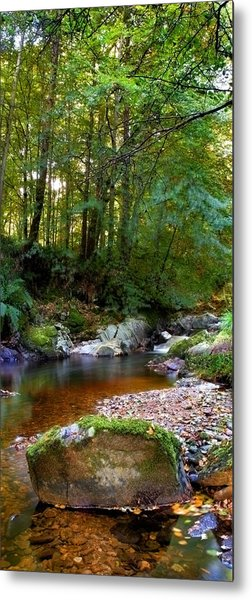 River In Cawdor Big Wood Metal Print