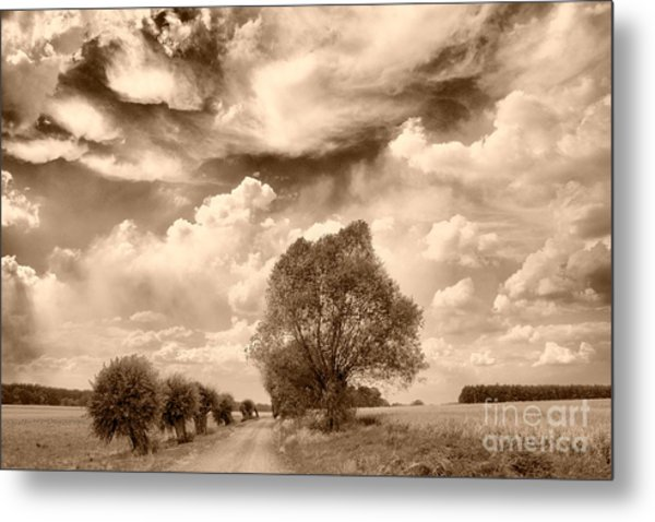 Road And Fields Metal Print
