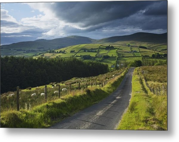 Road Through Glenelly Valley, County Metal Print