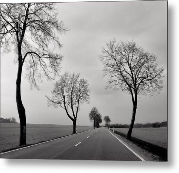 Road Through Windy Fields Metal Print