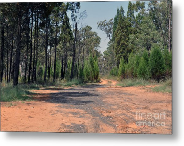 Road To Nowhere Metal Print by Joanne Kocwin