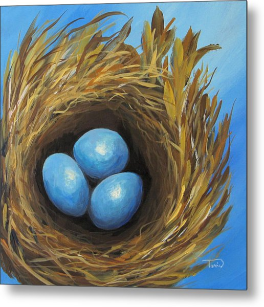 Robin's Three Eggs Iv Metal Print