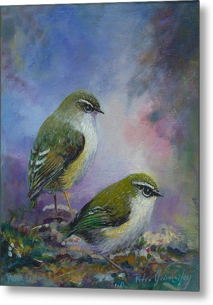 Rock Wren New Zealand Metal Print by Peter Jean Caley