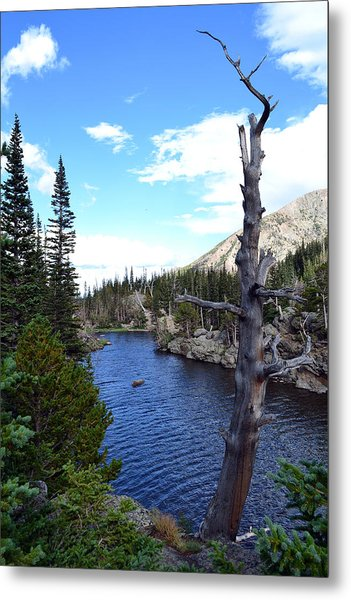 Rocky Mountain National Park1 Metal Print