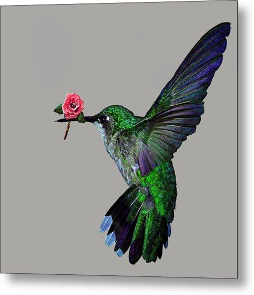 Rose Baring Bird Metal Print by Carly Ralph