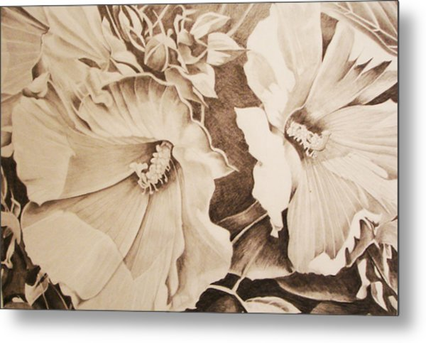 Rose Of Sharon Metal Print by Yvonne Scott