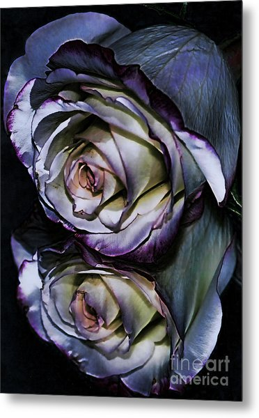 Rose Reflection 2 Metal Print by Marianne Troia