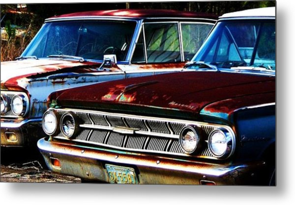 Rusted Metal Print by Beverly Hammond