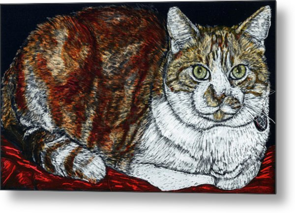 Rusty The Cat Metal Print by Robert Goudreau