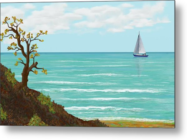 Sailing Metal Print by Tony Rodriguez