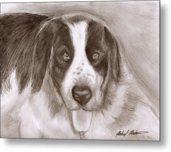 Saint Bernard Metal Print by Michael Mestas