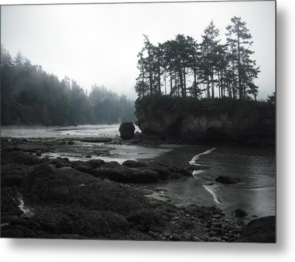 Salt Creek Near Port Angeles Metal Print