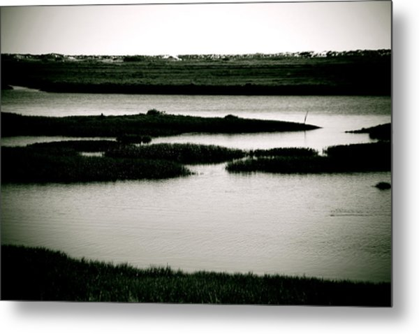 Salt Marsh Metal Print by Jez C Self