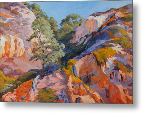 Sandstone Canyon At Torrey Pines Metal Print