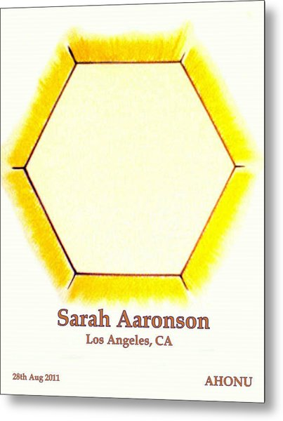 Sarah Aaronson Metal Print