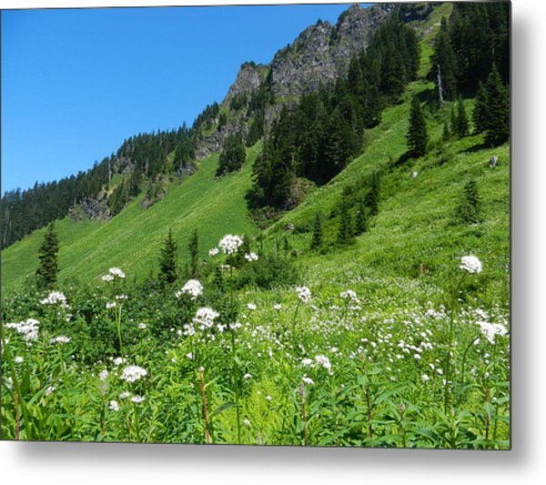 Sauk Mountain Metal Print