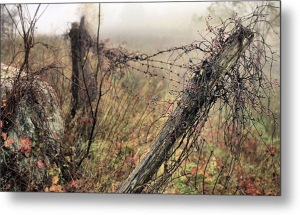 Scenic Overlook Metal Print by JC Findley