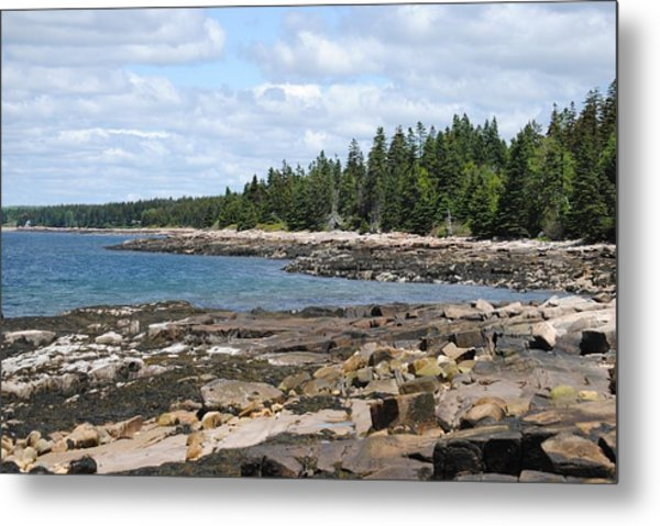 Schoodic Peninsula  Metal Print by Steven Scott