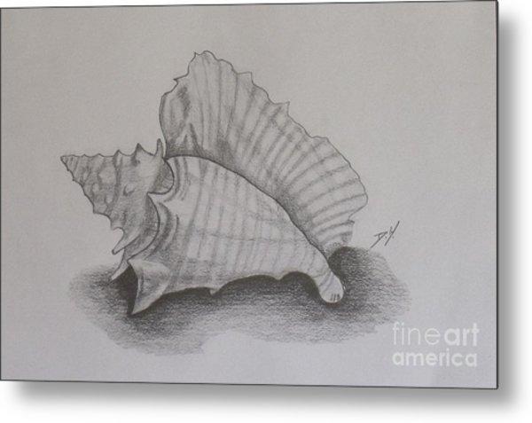 Sea Shell Metal Print by Debra Piro