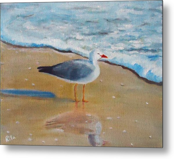 Seagull By The Shore Metal Print