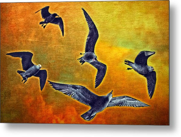 Seagulls In Flight Metal Print by Donna Pagakis
