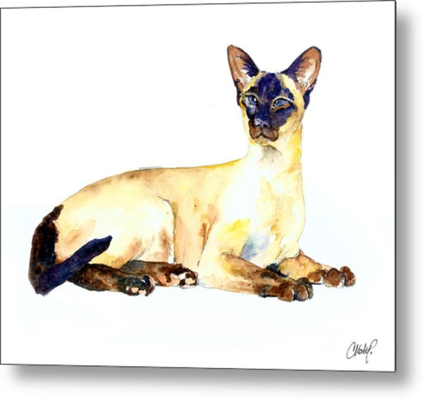 Seal Point Siamese Cat Old Metal Print