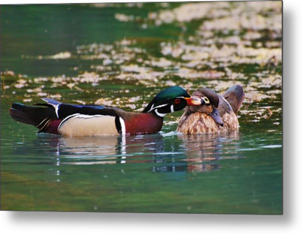 Sealed With A Kiss Metal Print by Charles Covington