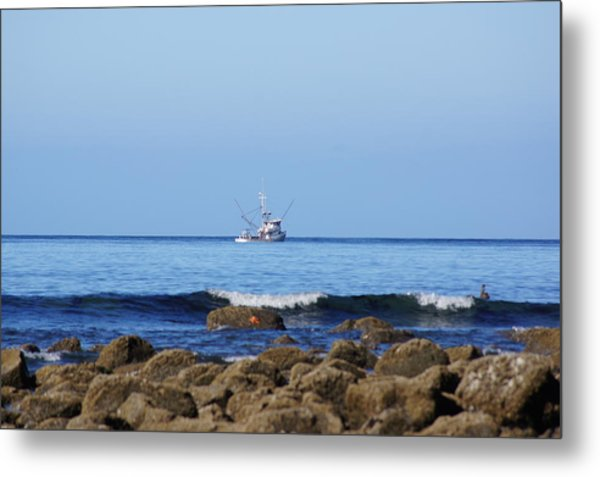 Searching For Crab Metal Print by Angi Parks