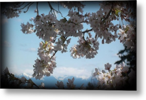 See The Cascades Metal Print by Lee Yang
