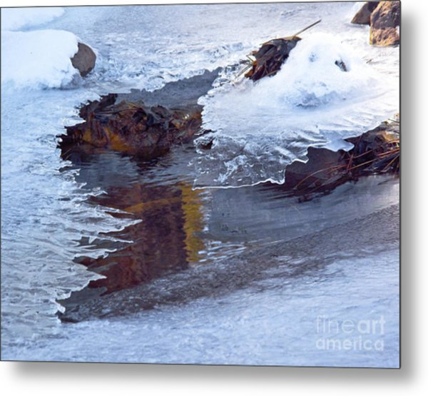 Serendipity In Ice  Metal Print