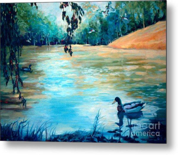 Shady Springs Pond Metal Print