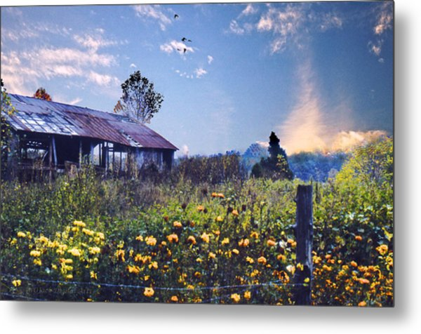 Shed In Blue Sky Metal Print by Walt Jackson