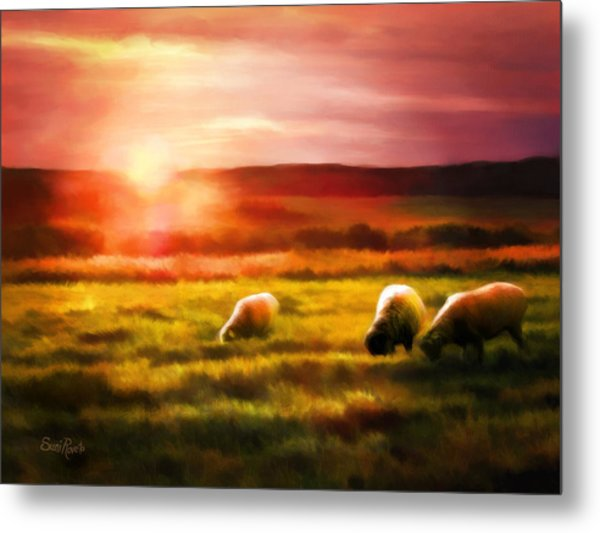 Sheep In Sunset Metal Print by Suni Roveto