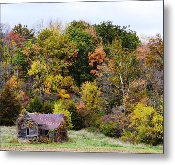 Shelter In The Fall Woods Metal Print