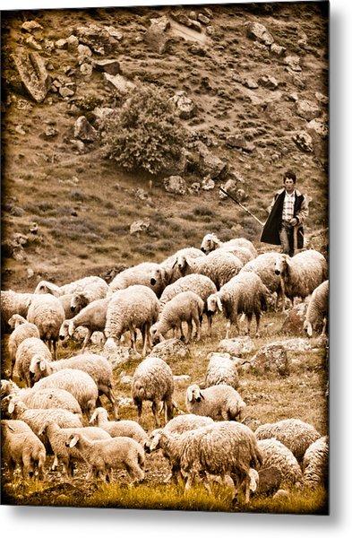 Guzelyurt, Turkey - Shepherd Metal Print