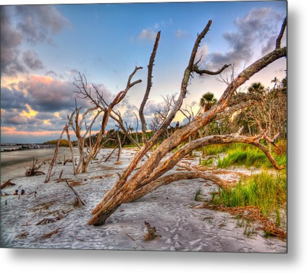 Shoreline Beach Driftwood And Grass Metal Print by Jenny Ellen Photography