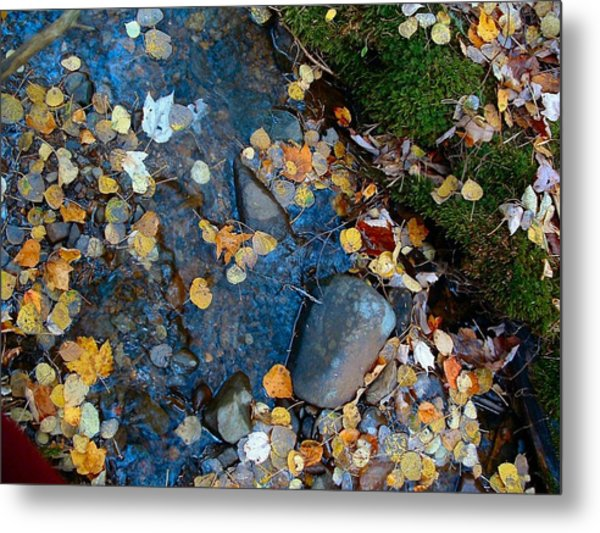 Shorelines - Campbell Creek Metal Print