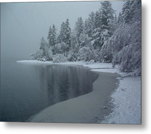Shorelines Lumsden Pond Reduced Visibility Metal Print