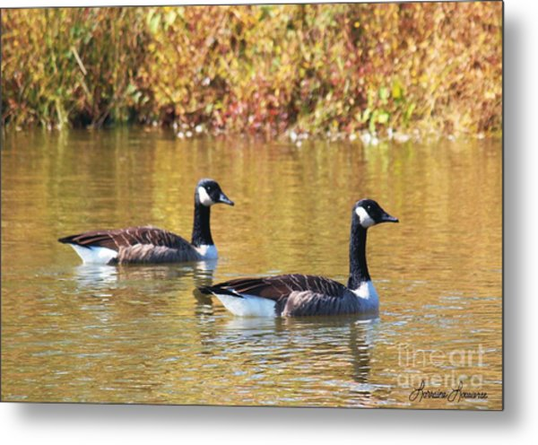 Side By Side Metal Print by Lorraine Louwerse