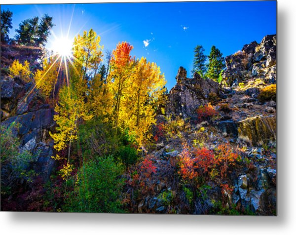 Sierra Nevada Fall Colors Lassen County California Metal Print by Scott McGuire