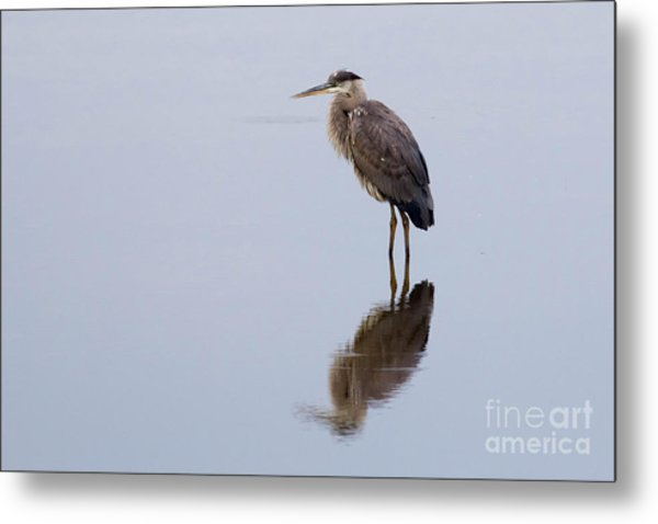 Silent Reflection Metal Print